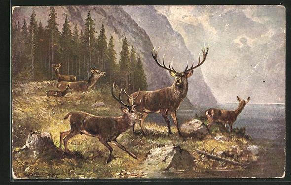 Künstler-AK M. Müller jun.: Hirschfamilie am See