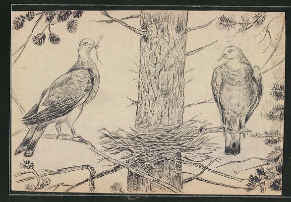 Künstler-AK Handgemalt: Vögel bauen ein Nest