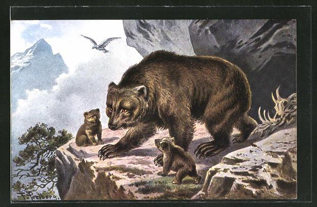Künstler-AK Friedrich Perlberg: Braunbär-Mutter mit Jungtieren