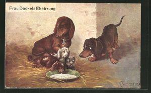 Künstler-AK Max Kuglmayr: Frau Dackels Eheirrung, Scherz