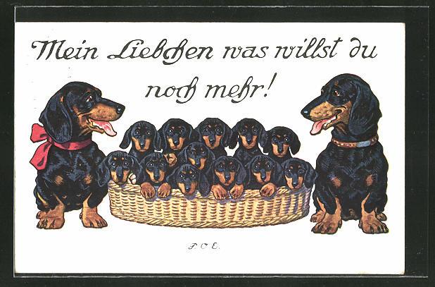 Künstler-AK P. O. Engelhard (P.O.E.): Mein Liebchen was willst du noch mehr!, Dackelfamilie