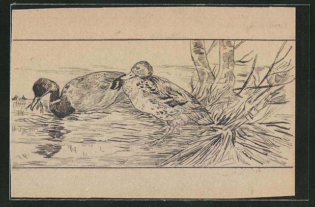 Künstler-AK Handgemalt: Enten im Teich