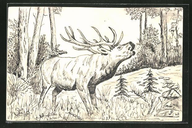 Künstler-AK Handgemalt: röhrender Hirsch im Wald