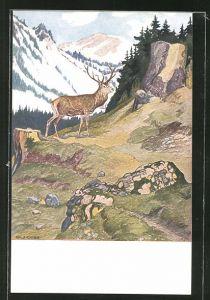 Künstler-AK Eugen Ludwig Hoess: Hirsch im Gebirge,