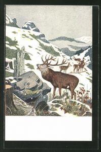 Künstler-AK Eugen Ludwig Hoess: Hirsch im verschneiten Gebirge,