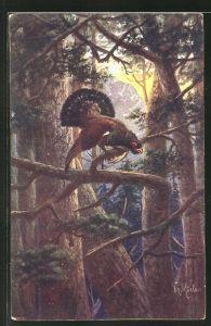 Künstler-AK Fr. Rösler: balzender Hahn auf einem Ast