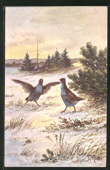 Künstler-AK Fr. Rösler: Vögel im Schnee