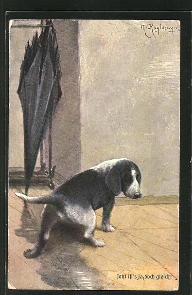 Künstler-AK Max Kuglmayr: Jetzt ist's ja doch gleich!, traurig schauender kleiner Hund