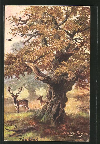 Künstler-AK Harry Payne: Hirsch & Reh an einem Baum