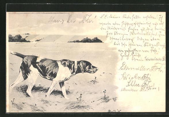 Künstler-AK Alfred Mailick: Jagdhund nimmt Witterung auf