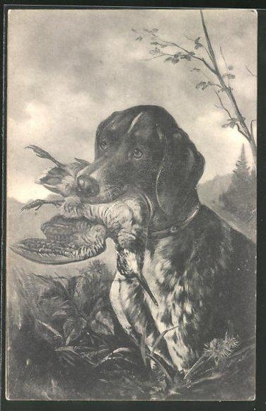 AK Jagdhund mit erbeuteter Schnepfe