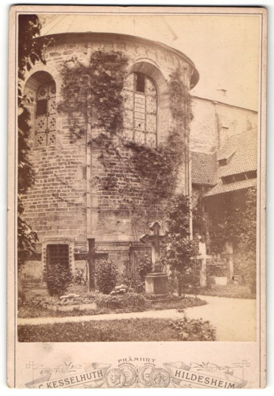 Fotografie C. Kesselhuth, Hildesheim, Ansicht Hildesheim, 1000 jähriger Rosenstock
