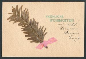Trockenblumen-AK Tannenzweig mit Schleife,