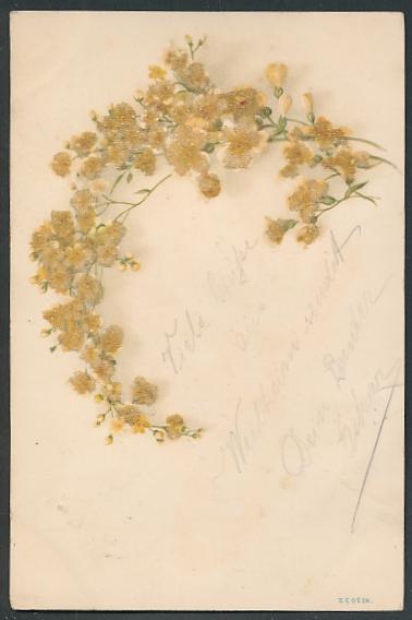 Glitzer-Perl-AK Zweig mit zarten weiss-gelben Blüten