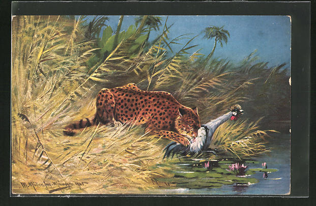 Künstler-AK M. Müller jun.: Leopard reisst einen Vogel am Ufer