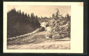 AK Brioni, Blick in eine Cava Romana in der Adria