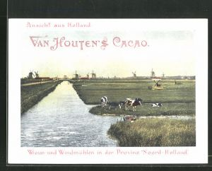 Sammelbild Van Houten's Cacao, Wiesen und Windmühlen in der Provinz Noord-Holland