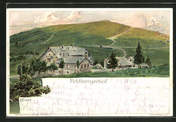 Künstler-Lithographie Carl Biese: Feldberghof, Panorama