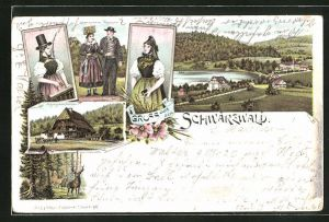 Lithographie Titisee, Paar in Schwarzwälder Tracht, Schwarzwälder Bauernhaus