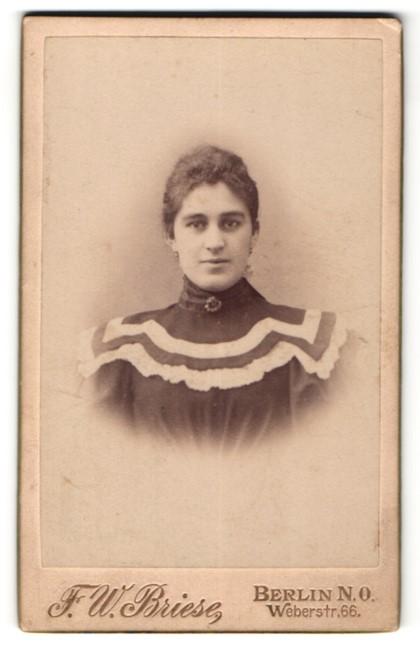 Fotografie F. W. Briese, Berlin, Portrait brünette junge Schönheit in eleganter Bluse mit Brosche und weisser Stickerei