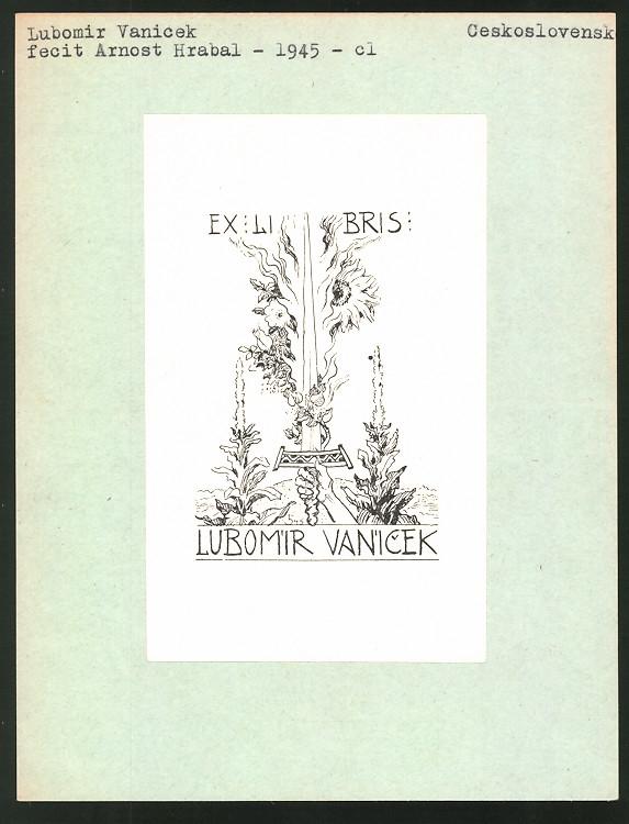Exlibris von Arnost Hrabal für Lubomir Vanicek, Schwert und Pflanzenverzierung
