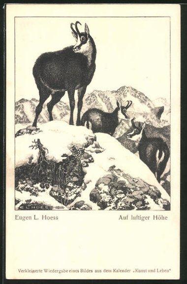 Künstler-AK Eugen Ludwig Hoess: Auf luftiger Höhe, Bergziegen