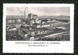 AK Wernesgrün i. V., Grenzquell-Brauerei H. Günnel aus der Vogelschau