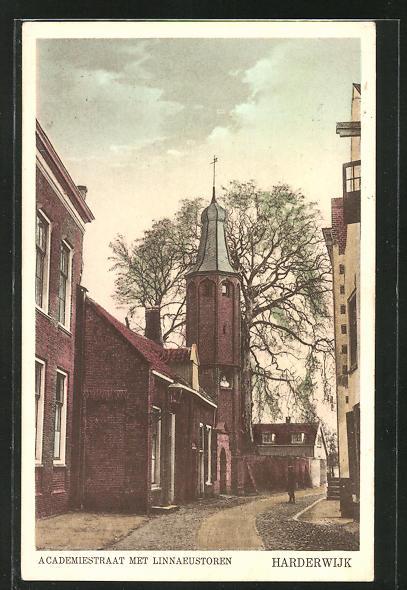 AK Harderwijk, Academiestraat met Linnaeustoren 0