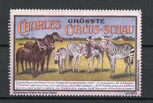 Reklamemarke Circus Charles, grösste Circus Schau, Bergzebraherde 0