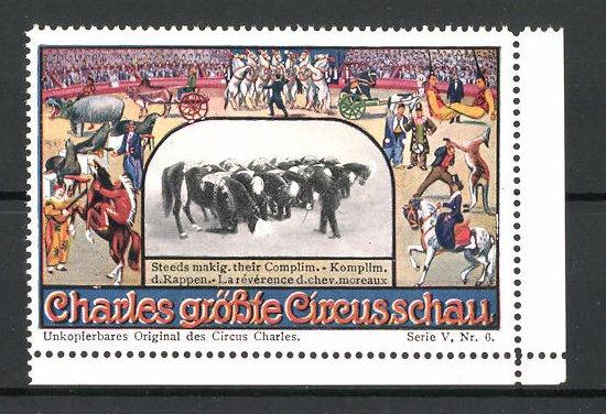 Reklamemarke Circus Charles, grösste Circus-Schau, Pferde verbeugen sich vor dem Publikum 0