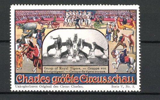 Reklamemarke Circus Charles, grösste Circus-Schau, Gruppe Königstigern mit Dompteur auf Podesten