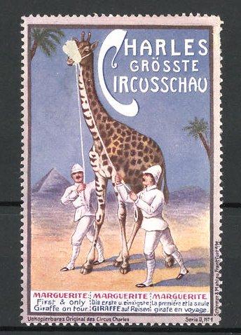 Reklamemarke Circus Charles, grösste Circus-Schauerste reisende Giraffe Marguerite 0