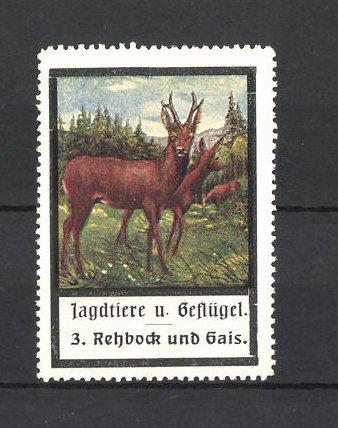 Reklamemarke Jagdtiere und Geflügel, Rehbock und Gais