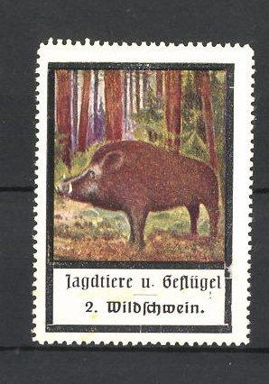 Reklamemarke Jagdtiere und Geflügel, Wildschwein