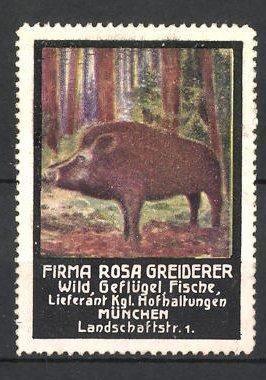 Reklamemarke Firma Rosa Greiderer, Lieferant für Wild, Geflügel und Fische in München, Wildschwein im Wald