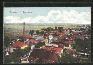 AK Zegwaard, Blick über die Dächer der Ortschaft
