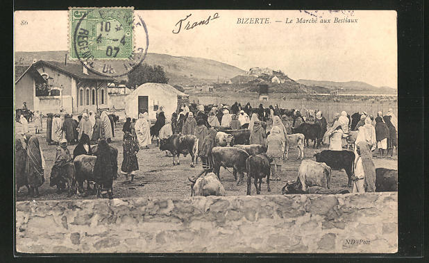 AK Bizerte, Le Marché aux Bestiaux, Händler auf dem Viehmarkt