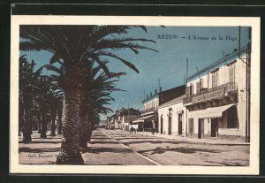 AK Arzew, L'Avenue de la Plage