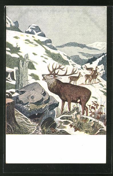 Künstler-AK Eugen Ludwig Hoess: Hirschrudel auf einem verschneiten Berg
