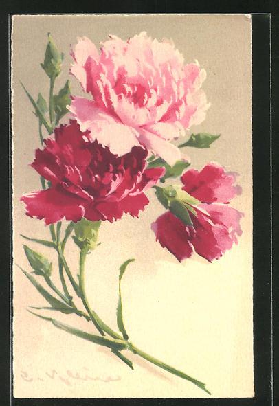 Künstler-AK Catharina Klein: Rosa und rote Nelken in voller Blüte