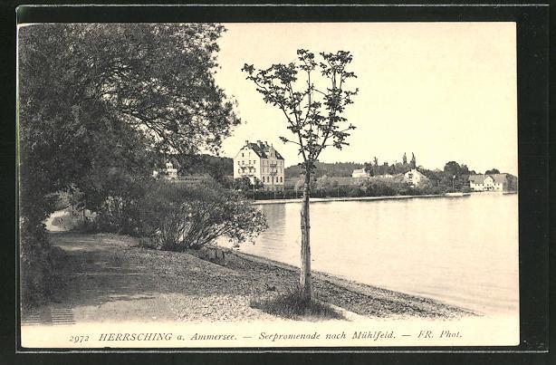 AK Herrsching a. Ammersee, Seepromenade nach Mühlfeld 0