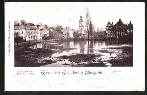AK Geilsdorf, Ansicht mit Gasthaus zum goldenen Löwen und Schloss