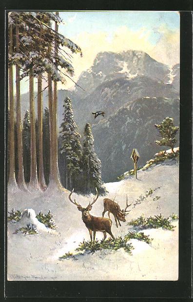 Künstler-AK M. Müller jun.: Hirsche im winterlichen Wald
