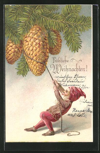 Präge-AK Weihnachtsgruss, Zwerg versucht einen Zapfen vom Ast zu ziehen