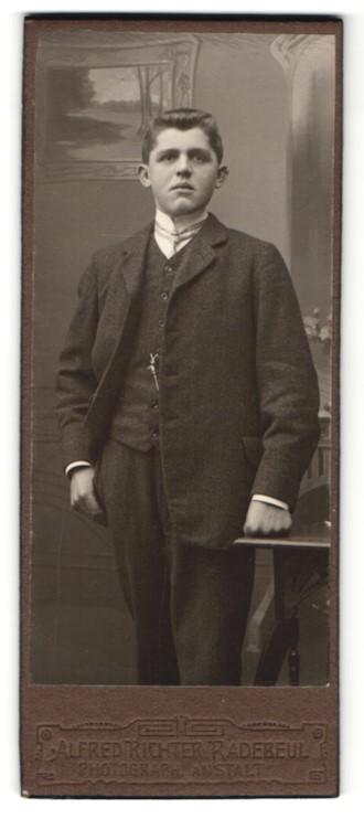 Fotografie Alfred Richter, Radebeul, Portrait halbwüchsiger Knabe in Anzug