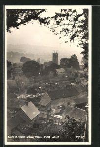 Foto-AK Shaftesbury, View from Pine Walk