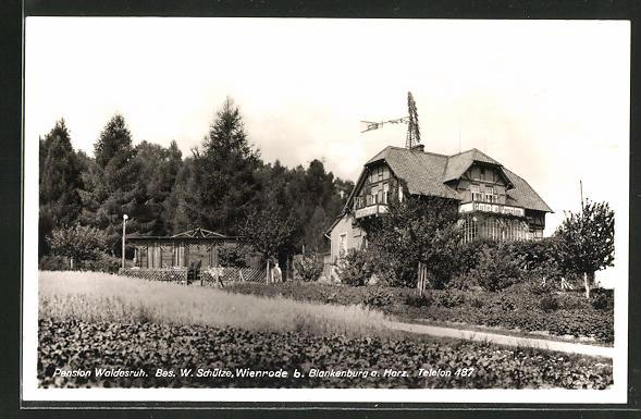 AK Wienrode / Harz, Pension Waldesruh, Bes. W. Schütze