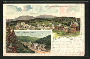 Lithographie Oberhof, Ortsansicht von Wünscher's Hotel gesehen, Eingang i. d. Brandleite-Tunnel