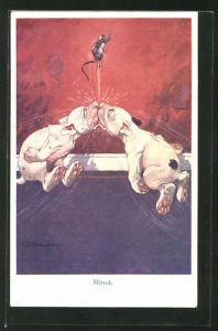 Künstler-AK George Ernest Studdy: Missed, Bonzo, Scherz