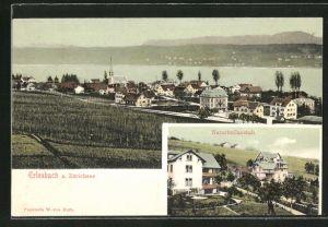 AK Erlenbach, Ortspartie mit Zürichsee, Naturheilanstalt
